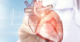 kalp hastalıkları, kalp hastalığının nedenleri, koroner kalp hastalığı