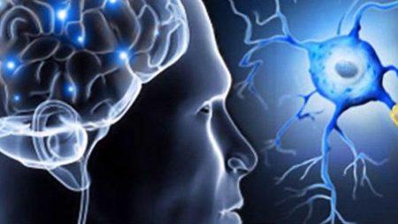multipl skleroz nedir, multipl skleroz teşhisi, multipl skleroz tedavisi